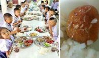 thực phẩm bẩn, thực phẩm có giòi, giòi lúc nhúc trong khay thức ăn