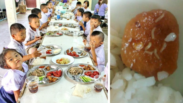 thực phẩm bẩn, thực phẩm có giòi, giòi bu lúc nhúc trong khay thức ăn