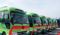 Phát triển loại hình minibus tại Hà Nội