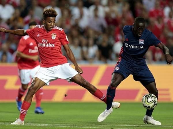 Dự đoán Benfica vs Lyon, 02h00 ngày 24/10